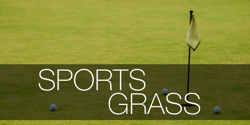 sports-grass-preview